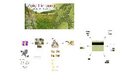 Copy of Zuid-Limburg - Dorp aan het Gerendal