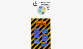 Copy of Práctica de Laboratorio