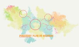 PINKBERRY PLAN DE MARKETING