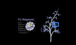 R.E Assignment