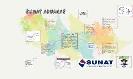 Copy of SUNAT ADUANAS