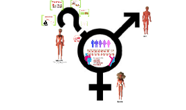 INTERSEXUALITAT: LA IDENTITAT CANVIADA