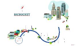 Copy of Copy of BICBUCKET