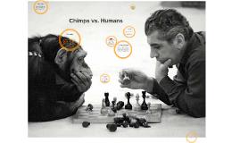 Chimps vs. Humans