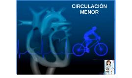 CIRCULACION MENOR