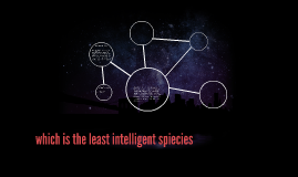 which is the least intelligent spiecies