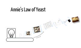 Law of Yeast