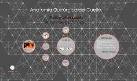 Anatomía Quirúrgica del Cuello.