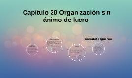 Copy of  Capitulo 20 Organización sin ánimo de lucro