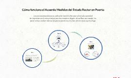 Cómo funciona el Acuerdo Medidas del Estado Rector en Puerto