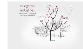 Copy of Bridgeton Industries