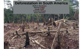 Deforestation in South America