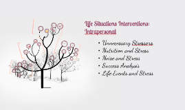 Life Situations Interventions: Intrapersonal