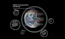 Copy of EDB024-Professional Plan (Action Plan)