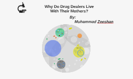 Why Do Drug Dealers Live With Their Mothers?
