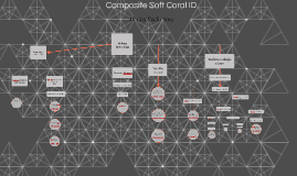 Composite Soft Coral ID
