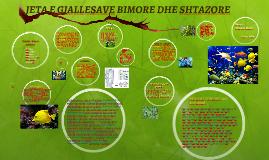 JETA E GJALLESAVE BIMORE DHE SHTAZORE