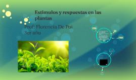 Copy of Estimulos y respuestas en las plantas