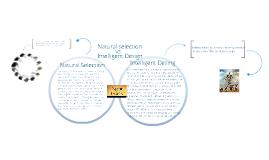 intelligent design vs natural selection essay