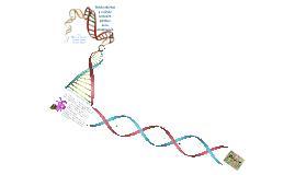 Copy of Genética de la Conservación