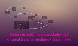 Copy of Determinacion de necesidades del personal a corto, mediano y
