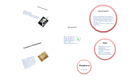 Phosphorus Element Project