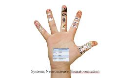 Lecture 10: Somatosensory
