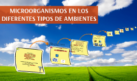 MICROORGANISMOS EN LOS DIFERENTES TIPOS DE AMBIENTES