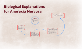 Biological Explanations for Anorexia Nervosa