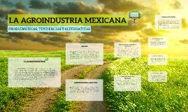 AGROINDUSTRIA MEXICANA