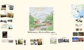 Waldensians in Río de la Plata region
