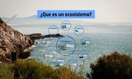 Copy of ¿Que es un ecosistema?