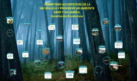 GARANTIZAR LOS DERECHOS DE LA NATURALEZA Y PROMOVER UN AMBIE