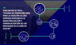 EVALUACION DE TESIS , ESTUDIO DE PREFACTIBILIDAD PARA LA CRE