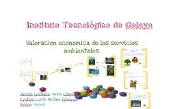 Copy of Valoración económica de servicios ambientales