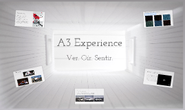 A3 Experience