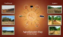 Agroforestry Day