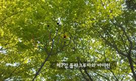 미술 제7강 외젠 들라크루아와 바이런