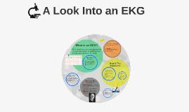 A Look Into an EKG