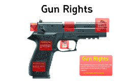 Guns Rights