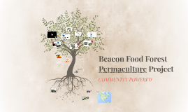 Copy of Beacon Food Forest