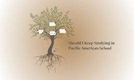 Should I Keep Studying in Pacific American School