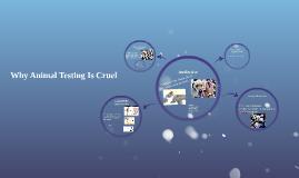 Why Animal Testing Is Cruel