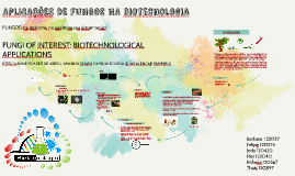 Fungos na biotecnologia