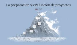 La preparación y evaluación de proyectos