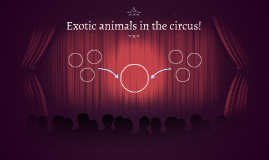 Exotic animals in the circus!