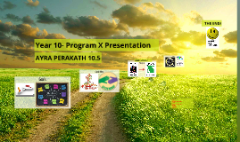 Year 10- Program X Presentation