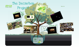 The Decarbon Project