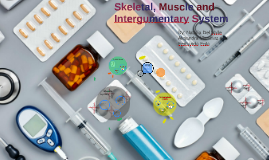 Skeletal, Muscle and Integumentary System