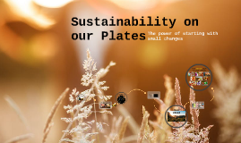 Sustainability on our Plates